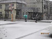 241118hatsuyuki_sapporo