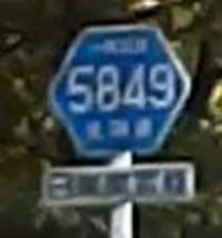 Dodo5849