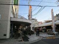 Asahidori