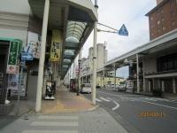 Mizusawa_elkimae